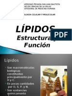 biología3-lipidos imp