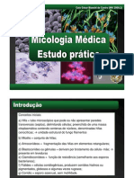 Micologia Prática 2009.02