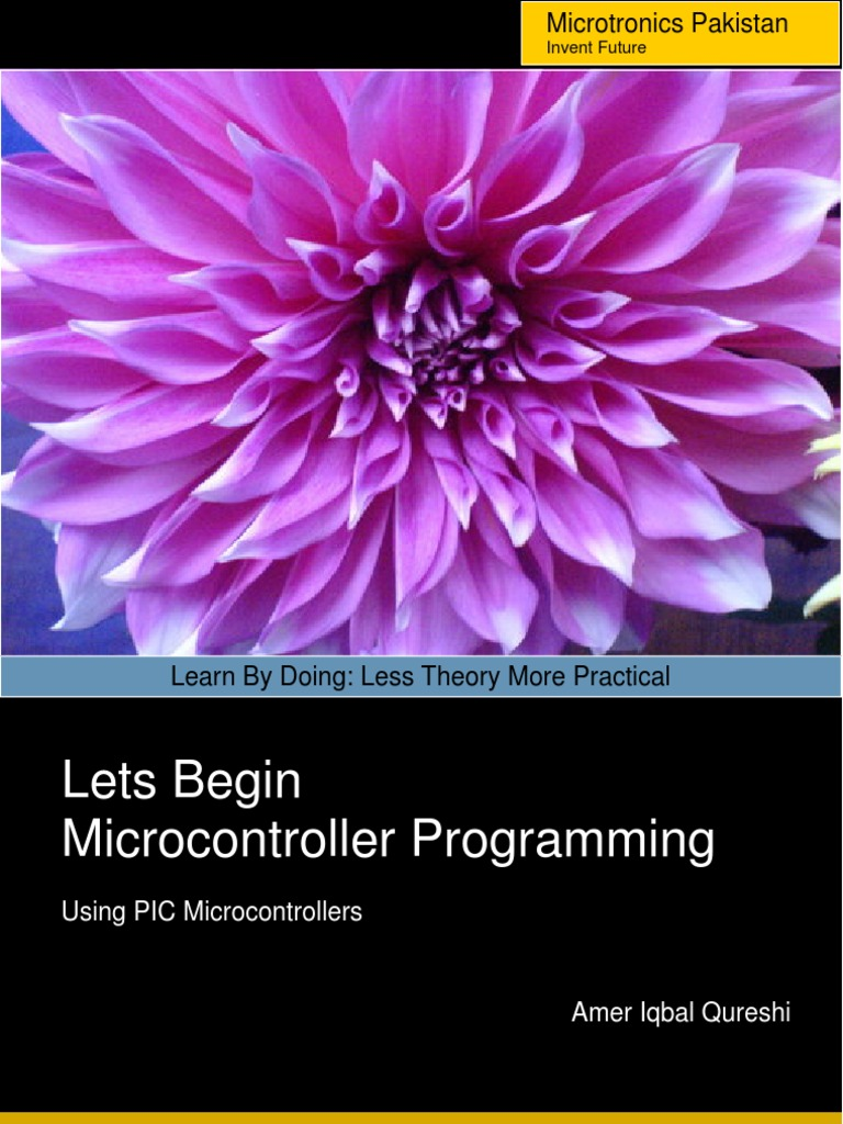 Beginnig PIC Programming | Microcontroller | Pic Microcontroller