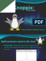 Knoppix Java