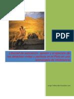 Libertad de asociación, opinión y el ejercicio de los derechos civiles y políticos en el Perú en una encrucijada de intolerancia