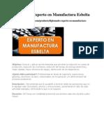 Diplomado Experto en Manufactura Esbelta