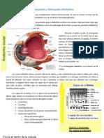 Retinopatia y Nefropatia DM