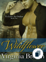 the To Love an Outlaw Series