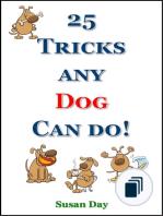 Quick Puppy Training