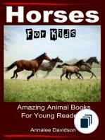Amazing Animal Books