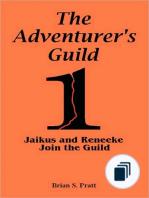 The Adventurer's Guild