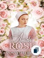 Amish Love Blooms