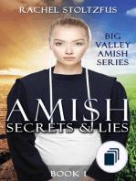 Big Valley Amish