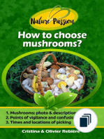 Nature Passion
