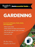 RD Quintessential Guides