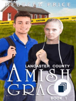 Lancaster County Amish Grace Series