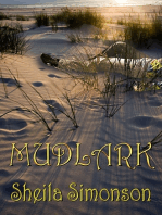 Mudlark (Lark Dodge Mysteries)