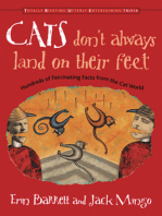 Cats Don't Always Land on Their Feet
