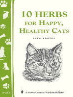 10 Herbs for Happy, Healthy Cats