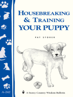 Housebreaking & Training Your Puppy