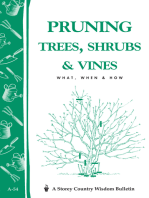 Pruning Trees, Shrubs & Vines