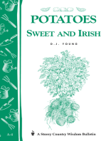 Potatoes, Sweet and Irish