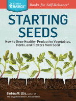 Starting Seeds