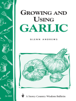 Growing and Using Garlic