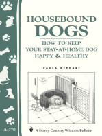 Housebound Dogs