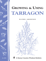 Growing & Using Tarragon