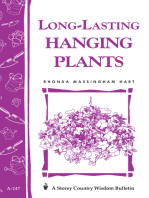 Long-Lasting Hanging Plants