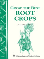 Grow the Best Root Crops