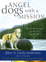 Angel Dogs with a Mission