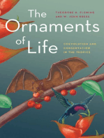 The Ornaments of Life