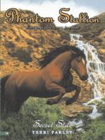 Phantom Stallion #19
