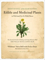Identifying & Harvesting Edible and Medicinal Plants