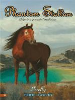 Phantom Stallion #18