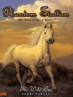 Phantom Stallion #1