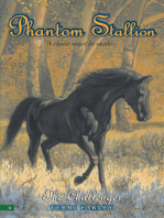 Phantom Stallion #6