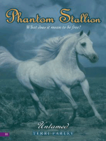 Phantom Stallion #11