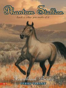 Phantom Stallion #13: Heartbreak Bronco
