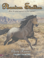 Phantom Stallion #21