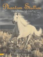 Phantom Stallion #16