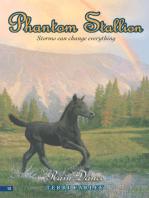 Phantom Stallion #12
