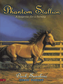 Phantom Stallion #3: Dark Sunshine