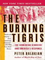 The Burning Tigris
