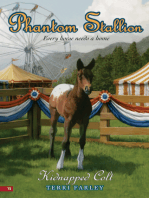 Phantom Stallion #15