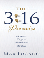 The 3:16 Promise