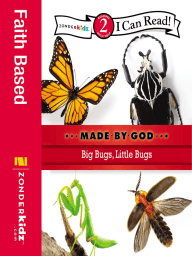 Big Bugs, Little Bugs book cover