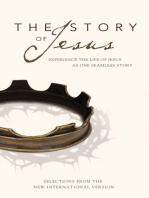 NIV, Story of Jesus, eBook