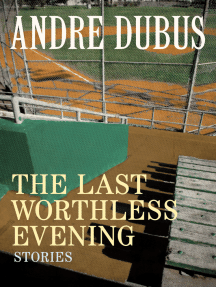 The Last Worthless Evening: Stories