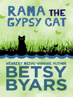 Rama the Gypsy Cat