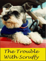 The Trouble With Scruffy