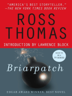 Briarpatch: A Novel